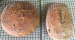 breadpic1