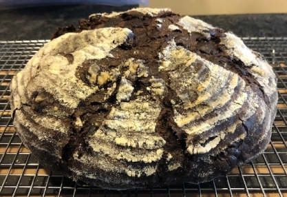 Sourdough chocolate bread with dried cherries.